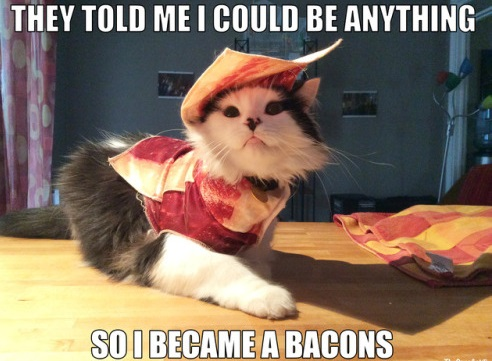 Kitty Bacon